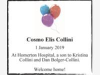 Cosmo Elis Collini photo