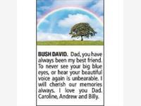 DAVID BUSH photo
