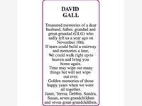 DAVID GALL photo
