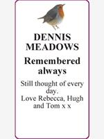 DENNIS      MEADOWS photo