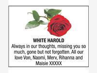 HAROLD WHITE photo