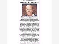 HARRY GOODWIN photo