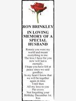 RON BRINKLEY  photo