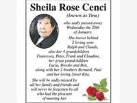 Sheila Rose Cenci photo
