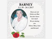 BARNEY photo