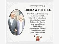 Sheila & Ted Bell photo