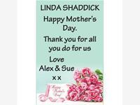 Linda Shaddick photo