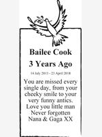 Bailee Cook photo