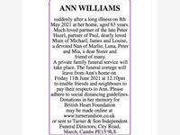 ANN WILLIAMS photo