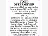 OSTERMEYER Tony photo