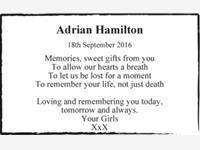 Adrian Hamilton photo