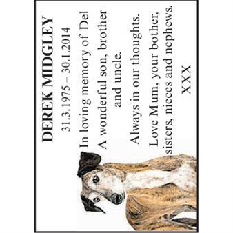 DEREK MIDGLEY