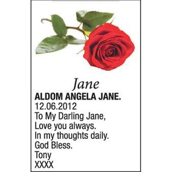 ANGELA JANE ALDOM
