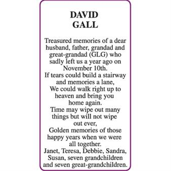 DAVID GALL