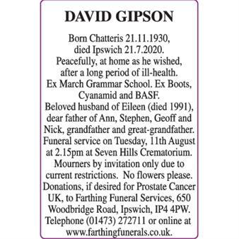 DAVID GIPSON