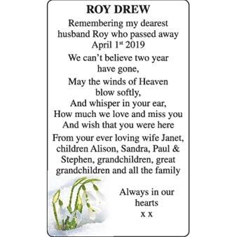 Roy Drew